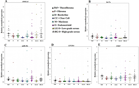 Relative normalized expression of HMGA2, LIN28A, and FHIT as well as the miRNAs miR-30c and let-7a.