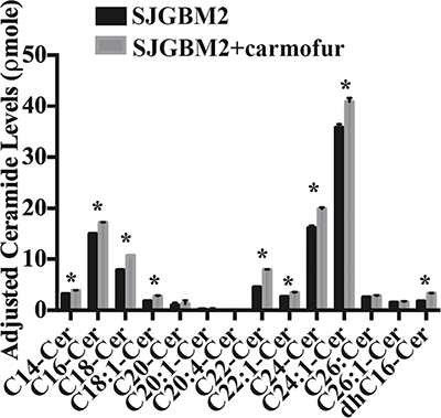 Treatment of SJGBM2 cells with carmofur resulted in intracellular accumulation of ceramides.