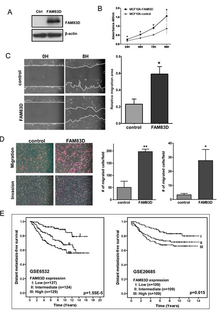 Ectopic expression of FAM83D enhances cell proliferation, migration and invasion.