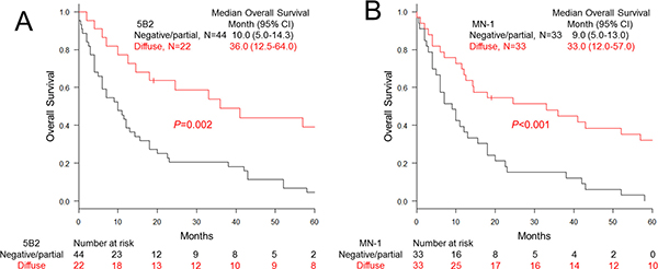 Overall survival of malignant pleural mesothelioma cases classified with mesothelin expression.
