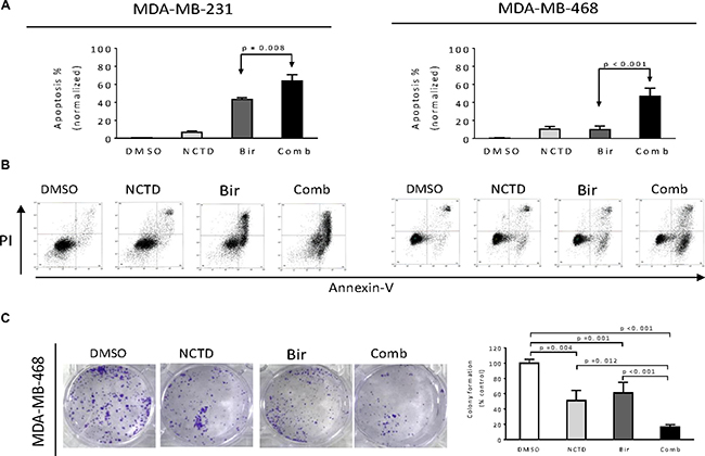 NCTD enhances Birinapant-mediated anticancer activity in breast cancer cells.