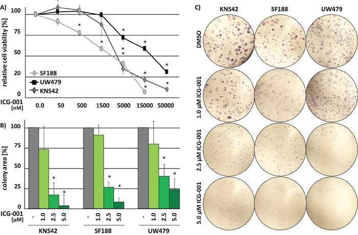 ICG-001 reduces pedHGG cell growth and clonogenicity in a dose-dependent manner.