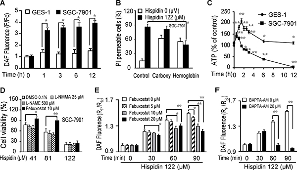 Hispidin induces LMP-related nitric oxide (NO) production, contributing to SGC-7901 cancer cell death.