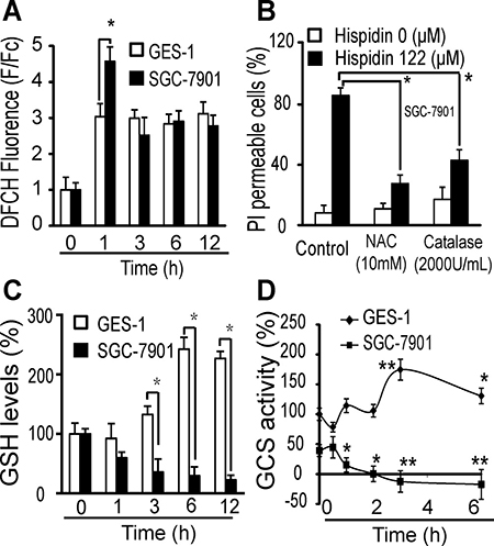 LMP-related redox system destruction increases oxidative stress in SGC-7901 cancer cells.