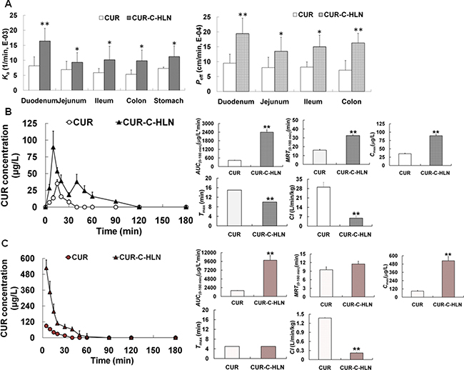 In situ absorptive and in vivo kinetic characteristics of CUR-C-HLN.