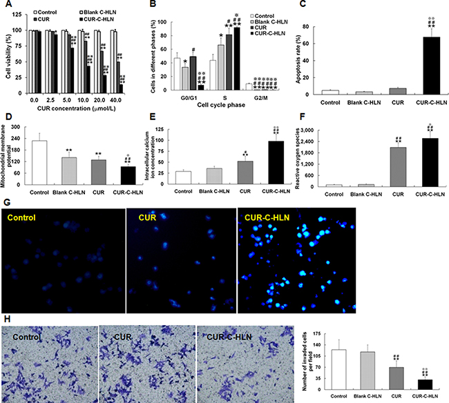 Effects of CUR-C-HLN on Lewis lung cancer cells.