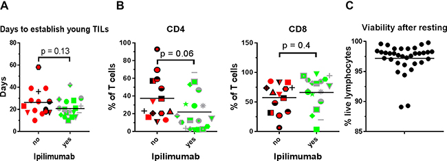 Young TIL generation, CD4/CD8 phenotype and cell viability.
