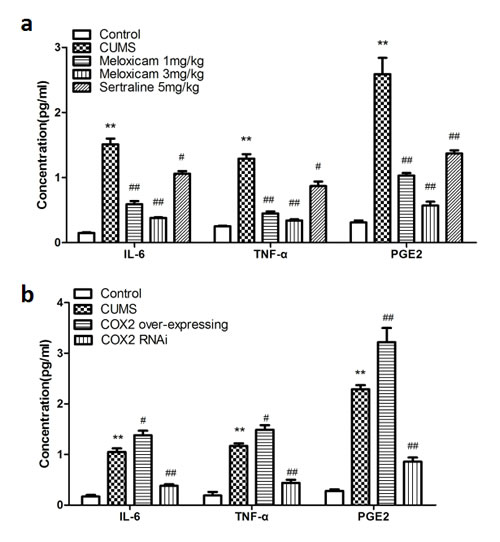 Changes of the concentration of inflammatory mediators in the hippocampus of CUMS rats upon inhibite the activity of COX2 or change the expression status of COX2.