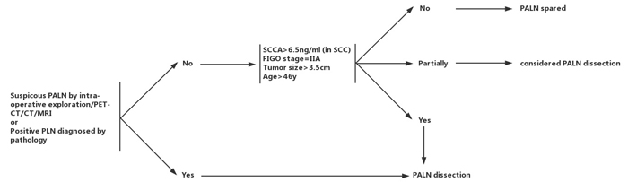 Flow chart of individual para-aortic lymphadenectomy in patients with stage IB1-IIA2 cervical cancer.