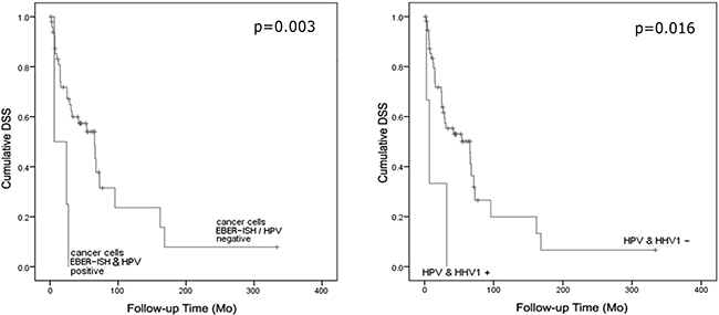 Cumulative disease-specific survival as stratified by either (a) EBER mRNA expression in cancer cells and HPV coinfection (positive/all cases n=4/54, p=0.003) or (b) HPV/HSV-1 coinfection (positive/all cases n=3/60, p=0.016).