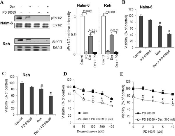 Pharmacological inhibition of ERK1/2 potentiates dexamethasone sensitivity in ALL cells.