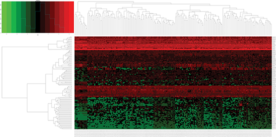 Heatmap of differentially expressed miRNAs (DEMs) in esophageal carcinoma (ESCA) and normal esophageal samples.
