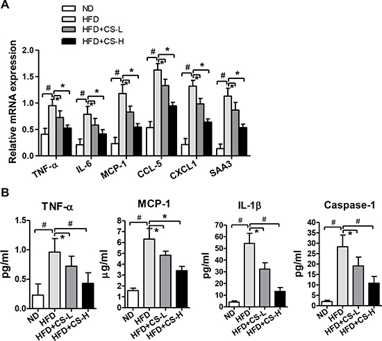 CS treatment inhibits high fat diet-induced inflammation in adipose tissue.