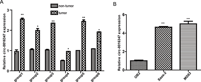 The expression levels of circ-0016347 are elevated in osteosarcoma.