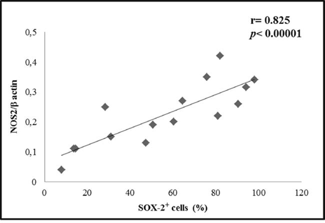 Correlation between NOS2 and SOX-2.