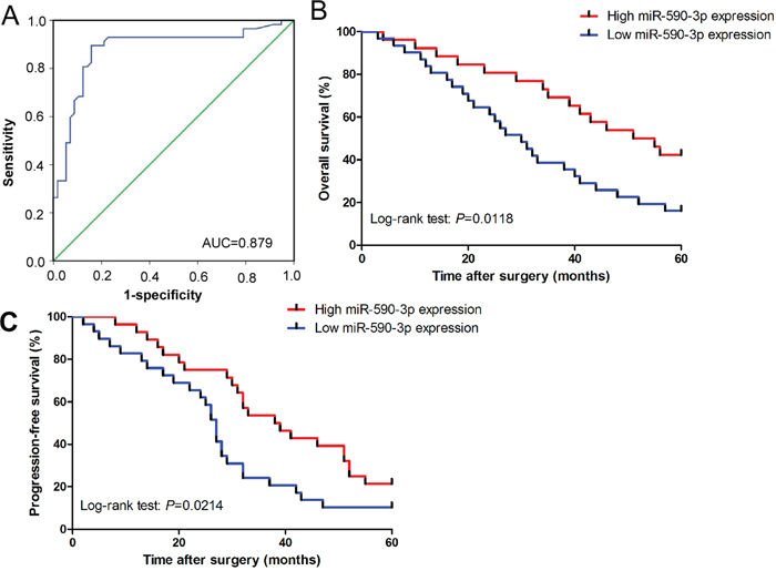Diagnostic and prognostic role of serum miR-590-3p in ICC patients.