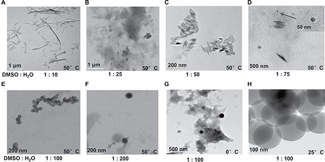 TEM images of WCN-21 nanoparticles or floc formed under different temperature and solvents.