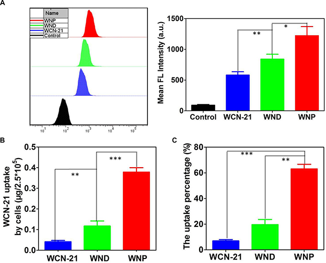 Intracellular uptake and accumulation of WCN-21.
