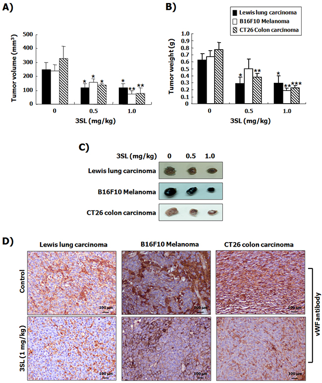 Suppression of tumor growth by sialyllactose in tumor-bearing mice.