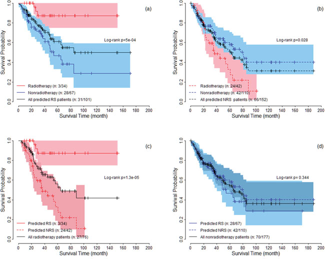 The survival curves under radiotherapy and nonradiotherapy for both predicted radiosensitive (RS) and nonradiosensitive (NRS) patients.