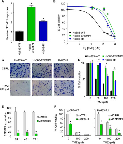 EFEMP1 induces TMZ-resistance in glioblastoma cells.