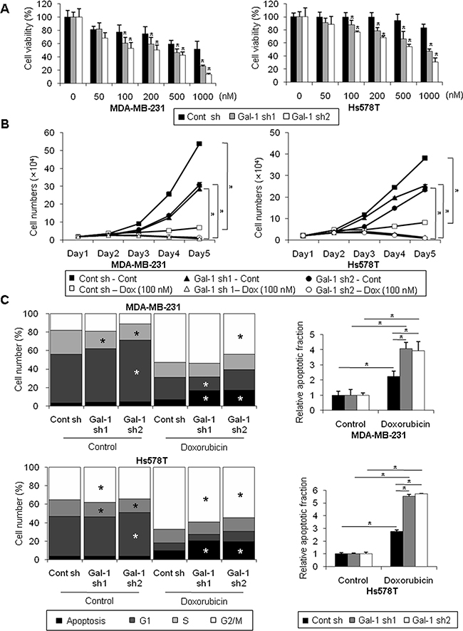 Silencing of galectin-1 decreases doxorubicin resistance of human breast cancer cells.