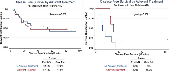 Univariate survival analysis in NSCLC patients stratified by adjuvant treatment in high ATM-EI and low ATM-EI groups.
