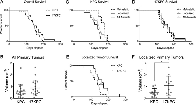 Loss of mir-17~92 prolongs survival in mice without metastases.