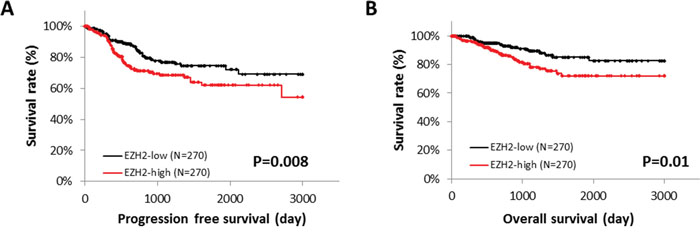 EZH2 expression and patient survival.