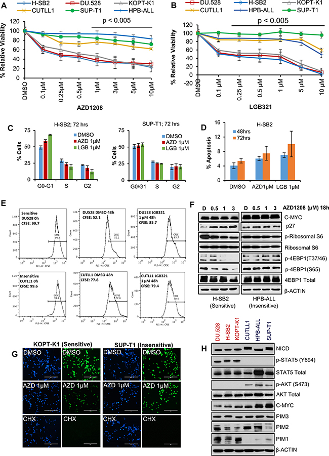 A subset of T-ALL cell lines is sensitive to Pan-PIM kinase inhibitors.