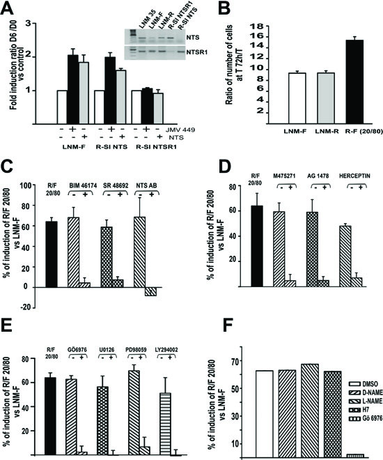 NTS autocrine and paracrine regulation enhanced cellular growth in human lung cancer cell lines.