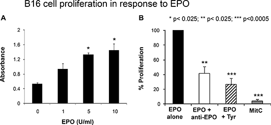 Functional studies of EPOR.