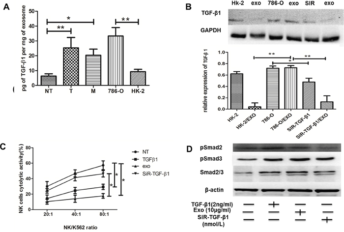 Texs interacted with NK cells through TGFβ1/Smad signaling.