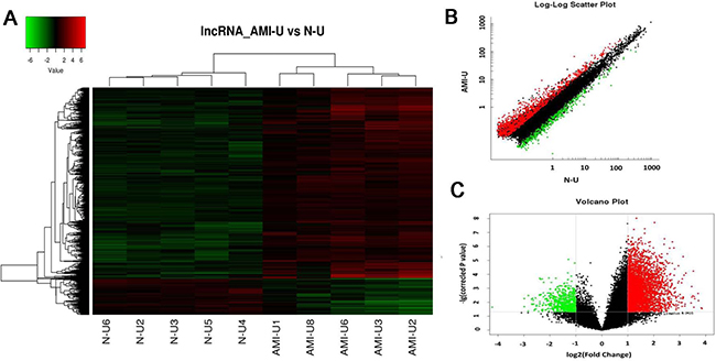 Differential expression of lncRNAs in patients with acute myocardial infarction (AMI) and control individuals in Uyghur of Chinese.