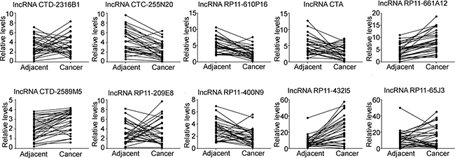 The expression of miR-210 related lncRNAs in osteosarcoma tissues.