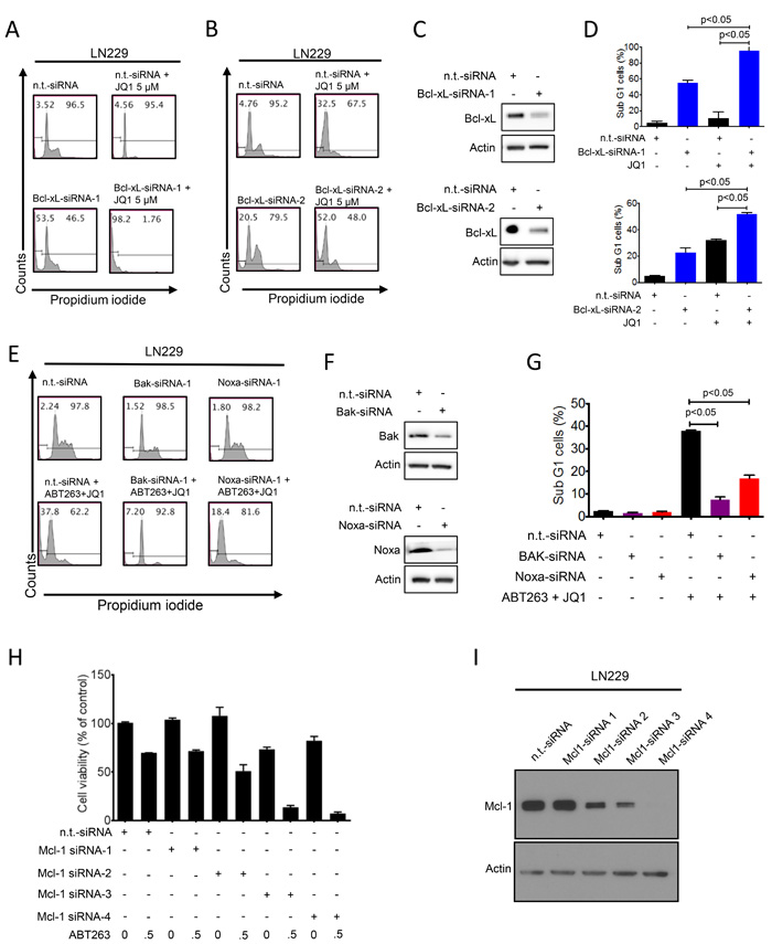 Functional implications of Bcl-2 family members in the combined treatment of ABT263 and JQ1.
