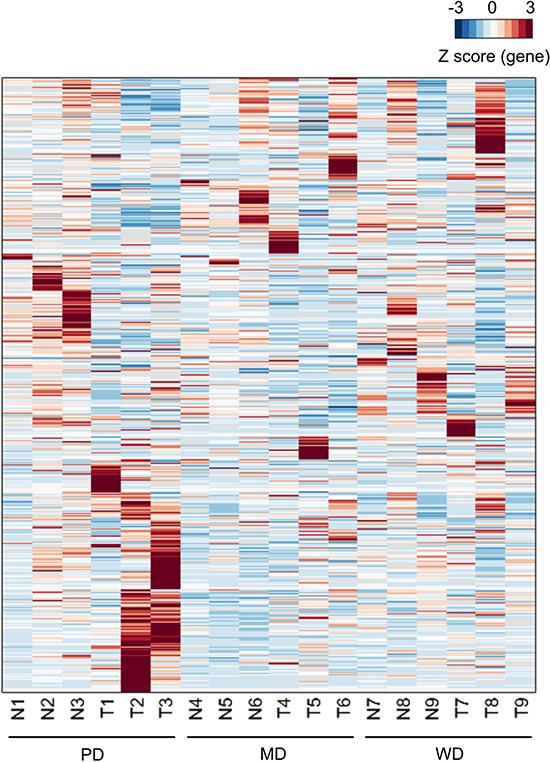 Heatmap of expressed genes.