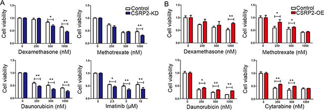 CSRP2 knock-down increases drug sensitivity.