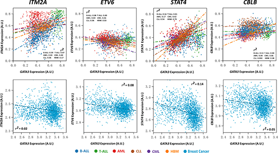 Expression association status of GATA3 with ITM2A, ETV6, STAT4, and CBLB in different types of leukemia, including B-ALL (N = 576), T-ALL (N = 174), AML (N = 542), CLL (N = 448), CML (N = 76), and healthy bone marrow (HBM, N = 74) based on GSE13204, and breast cancer based on EGAS00000000083 (N = 1,992).