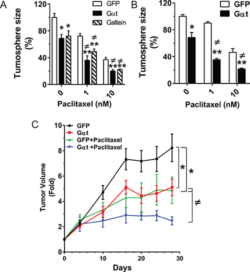 Blocking Gβγ signaling increases the therapeutic efficacy of paclitaxel in vitro and in vivo.