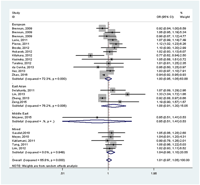 Forest plot of the effect of FTO rs9939609 on risk of cancer by race/ethnicity without adjustment for body mass index.