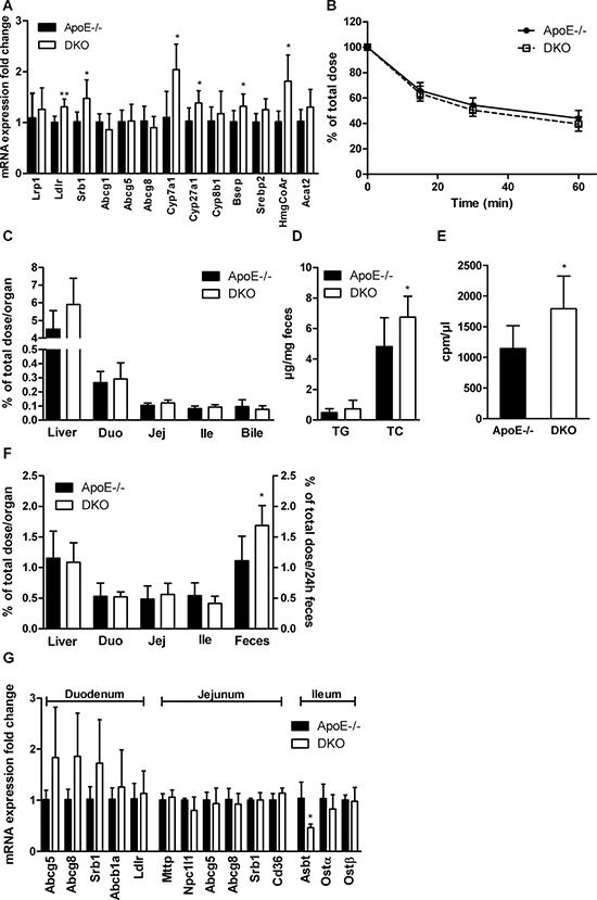 Increased biliary secretion of hepatic cholesterol in DKO mice.