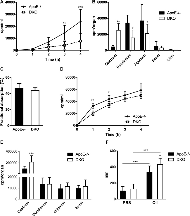 Delayed gastric emptying and reduced gut motility in DKO mice.
