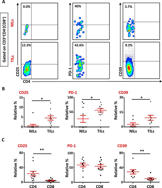 Phenotypic characterization of CD3+CD4- (CD8+) T cells in NILs and TILs.
