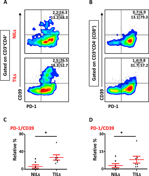 Expression of PD-1/CD39 in CD4+ and CD8+ T cells in NILs and TILs.