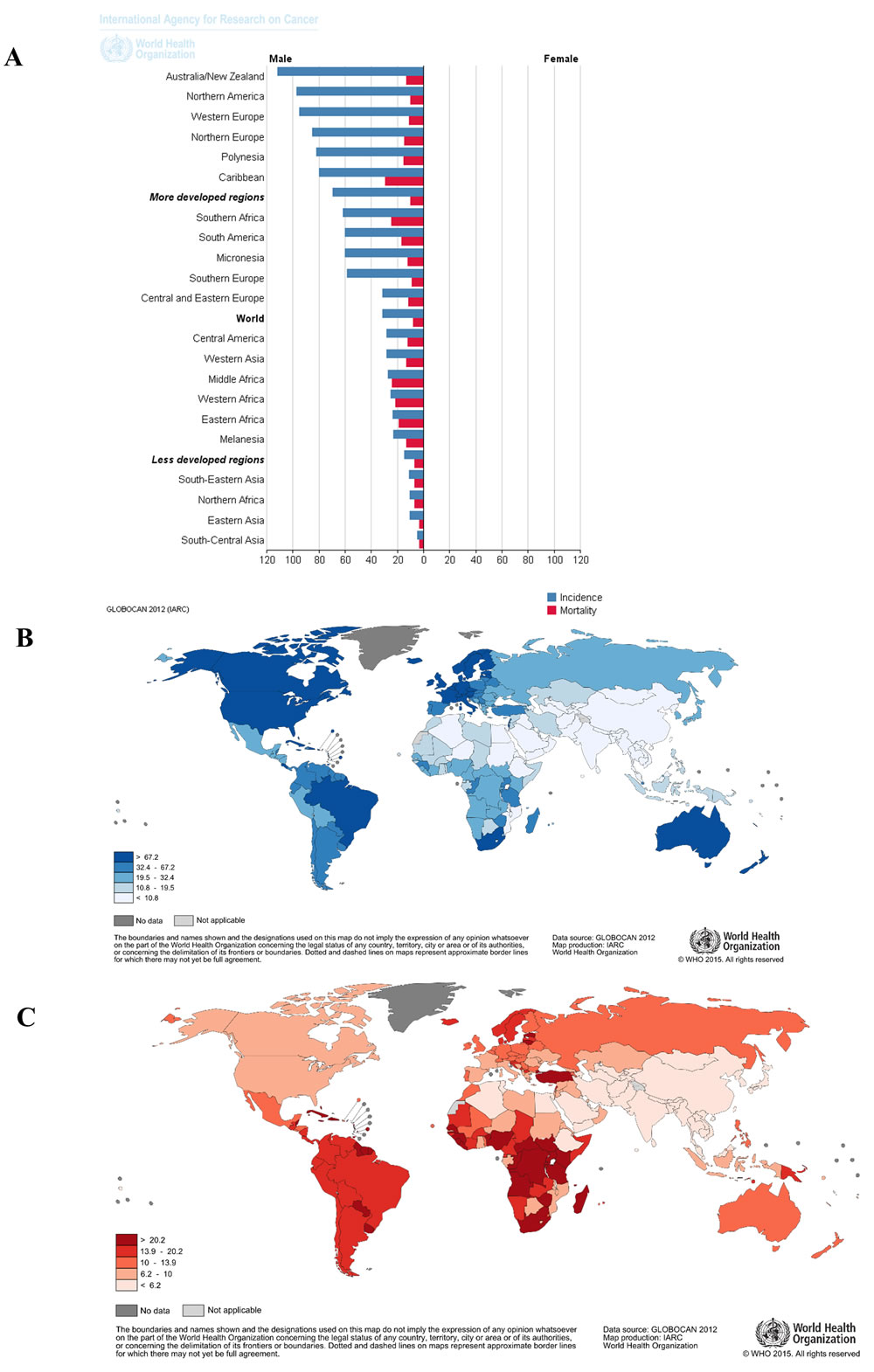 Global epidemiology of prostate cancer showing high burden of prostate cancer in Africa.