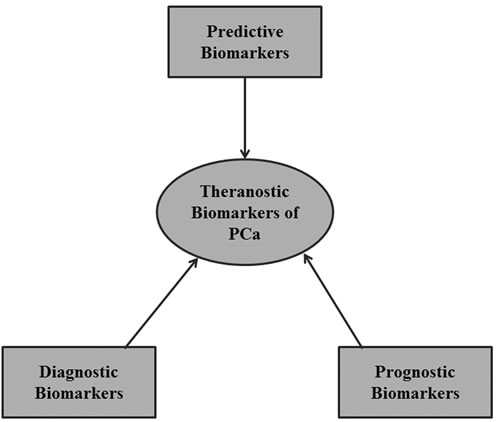 A theranostic approach to biomarker development.