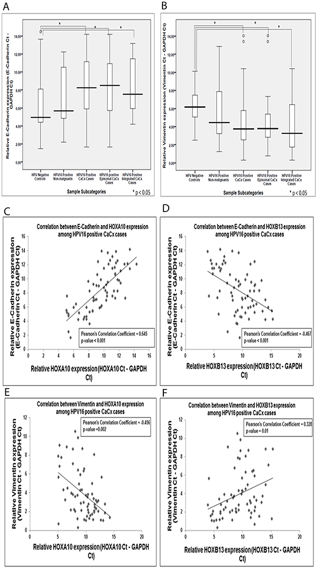 Box plots representing expression levels of the E-Cadherin and Vimentin among the different categories of cervical samples and their correlation with HOXA10 and HOXB13 expression, among cervical cancers.