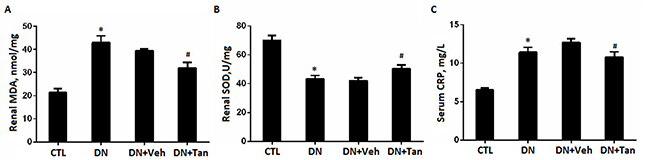Tanshinone IIA inhibited the renal oxidative stress markers and serum CRP in DN rats.