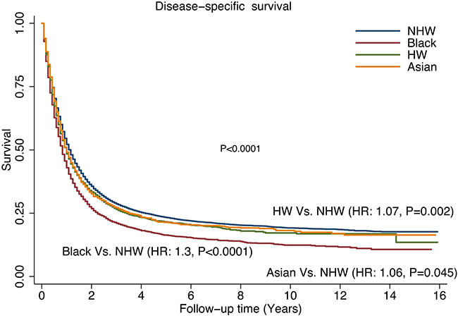 Comparison of disease-specific survival (DSS) rates by different racial/ethnic groups.